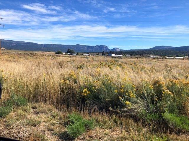 TBD Tierra Amarilla, Tierra Amarilla, NM 87551 (MLS #201904914) :: The Very Best of Santa Fe
