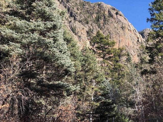TBD Falls Creek Rd, Chama, NM 87520 (MLS #201905063) :: The Very Best of Santa Fe
