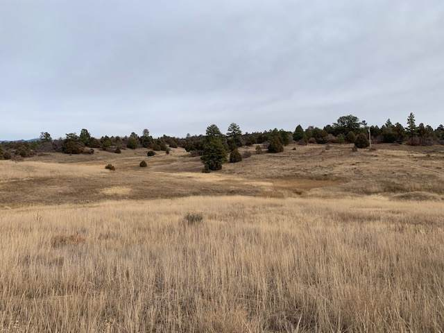 Lot 16 Deer Trail Chama West, Chama, NM 87520 (MLS #201905180) :: The Very Best of Santa Fe