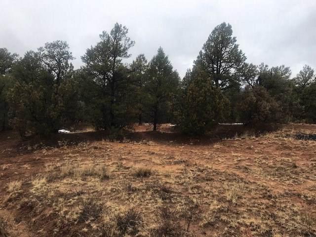 22 A Mirasol Ln, Pecos, NM 87552 (MLS #201905351) :: Berkshire Hathaway HomeServices Santa Fe Real Estate