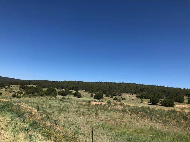 20 Brannan, Tijeras, NM 87015 (MLS #202000751) :: The Desmond Hamilton Group
