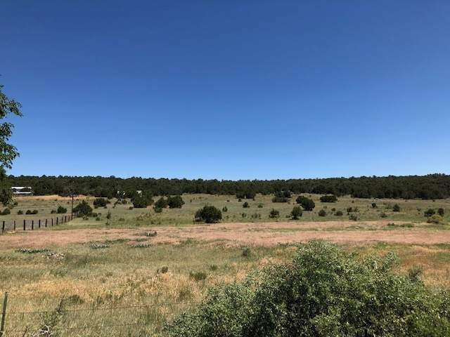 44 Brannan Road, Tijeras, NM 87015 (MLS #202000753) :: The Desmond Hamilton Group
