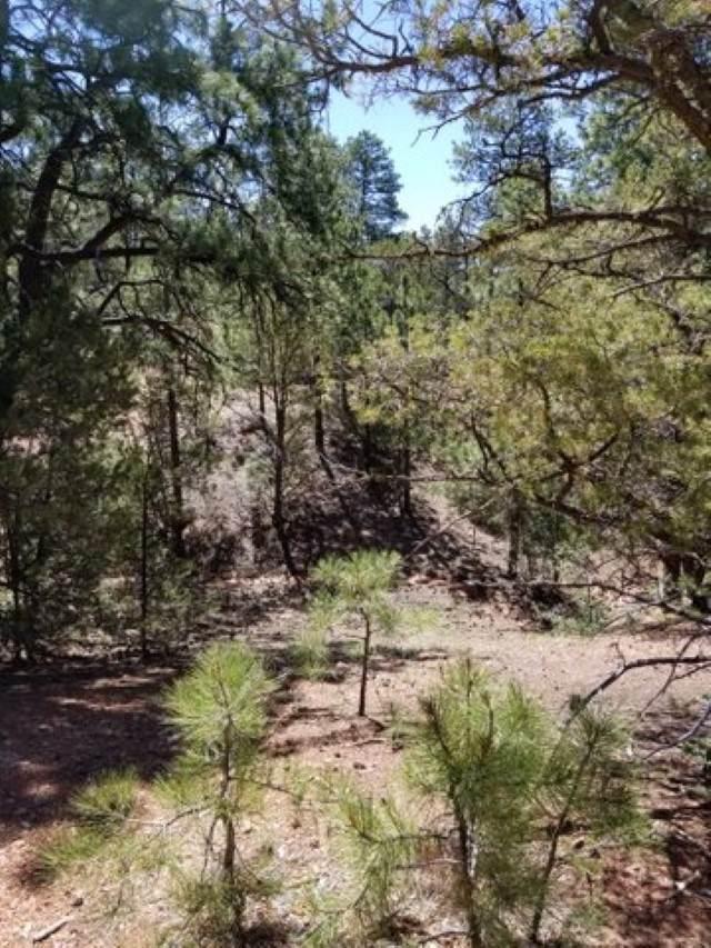 18 Cougar Ridge - Photo 1