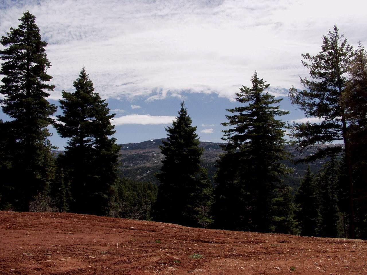 #3 Aspen Bluff, Red Rock Rd, Ticonderoga - Photo 1