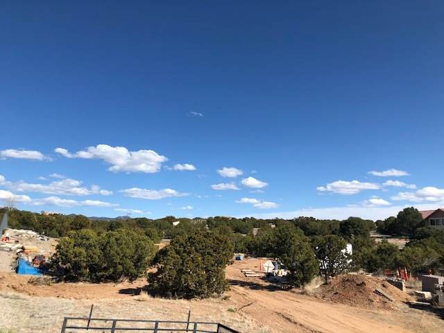 3043 S Richards Ave, Santa Fe, NM 87507 (MLS #202001089) :: The Very Best of Santa Fe