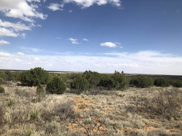 1200 Blue Hole Road, Santa Rosa, NM 88435 (MLS #202001145) :: Summit Group Real Estate Professionals