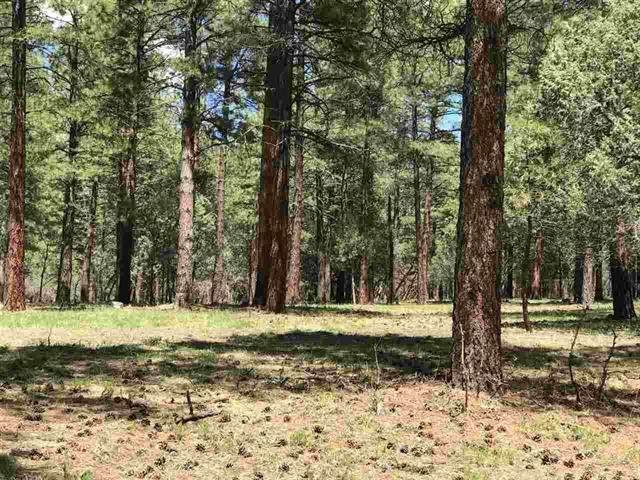 0 Block-2, Lot 7, Brazos Estates, Chama, NM 87520 (MLS #202001159) :: The Desmond Hamilton Group