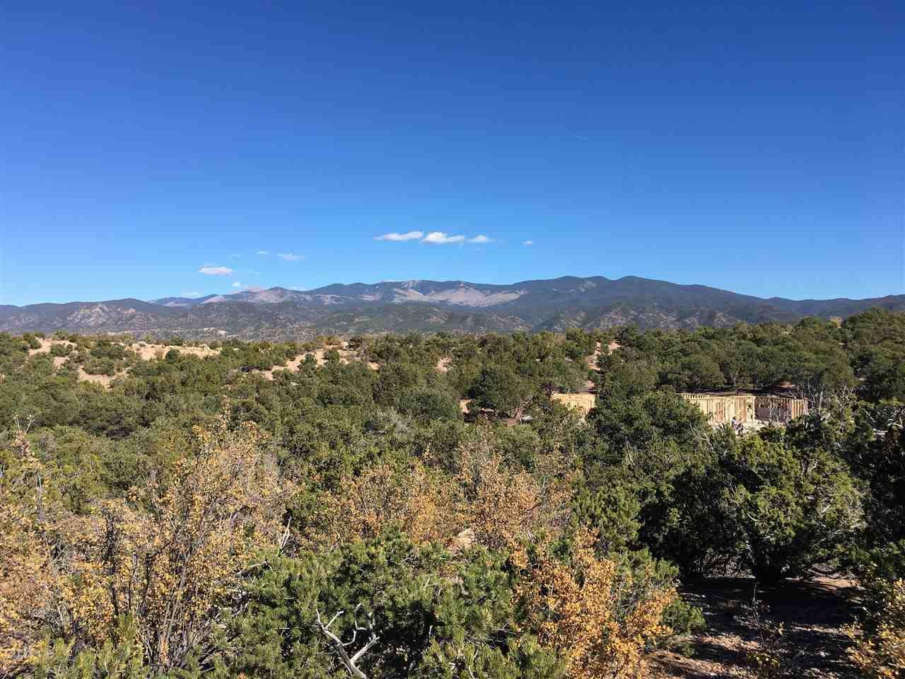 313 Pawprint Trail, Lot 129 - Photo 1