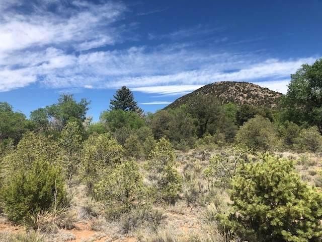 0 Old Santa Fe Trail, Santa Fe, NM 87505 (MLS #202001830) :: The Desmond Hamilton Group