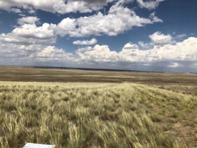 TBD Palomino Drive, Moriarty, NM 87035 (MLS #202002088) :: The Very Best of Santa Fe