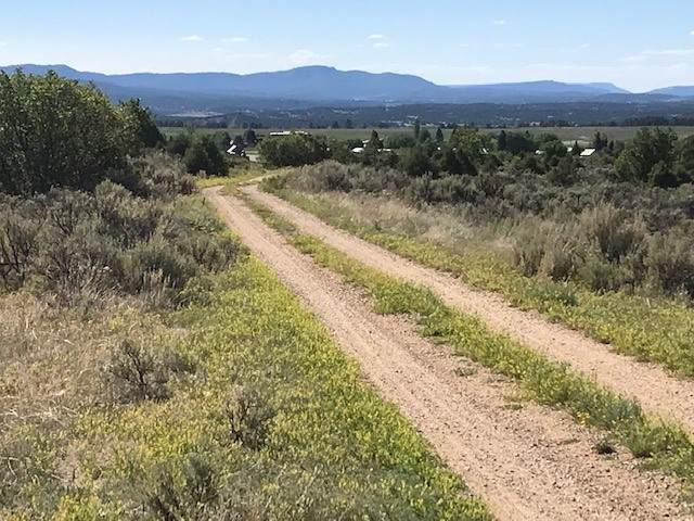 Lot 38, Tract 1 Tierra Grande, Ensenada, NM 87551 (MLS #202002494) :: The Desmond Hamilton Group