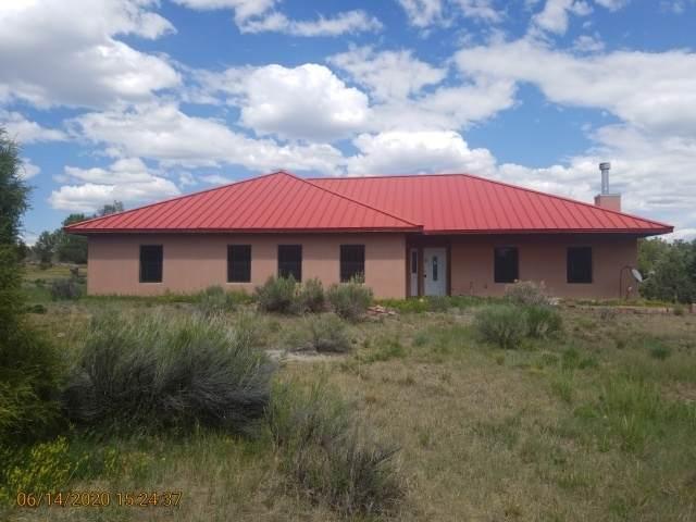 57 El Vado Road, Rutheron, NM 87551 (MLS #202002615) :: The Desmond Hamilton Group