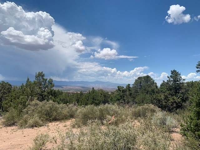 47 Pacheco Meadow Lane, Santa Fe, NM 87506 (MLS #202002790) :: Summit Group Real Estate Professionals