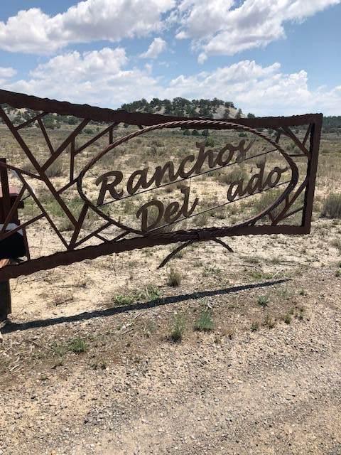 U 1, L166 &168 Ranchos Del Vado, Tierra Amarilla, NM 87551 (MLS #202002822) :: The Very Best of Santa Fe