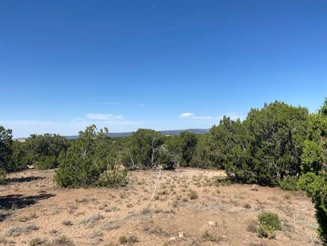 27 Koshari, Santa Fe, NM 87506 (MLS #202002950) :: The Very Best of Santa Fe