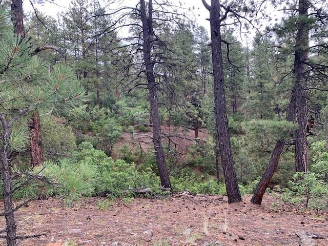 TBD Unit 6 Lot 1 Ponderosa, Chama, NM 87520 (MLS #202003016) :: Summit Group Real Estate Professionals