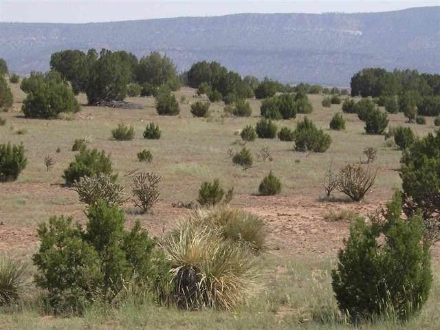 12 Moon Dance Ranch, Romeroville, NM 87701 (MLS #202003091) :: The Very Best of Santa Fe