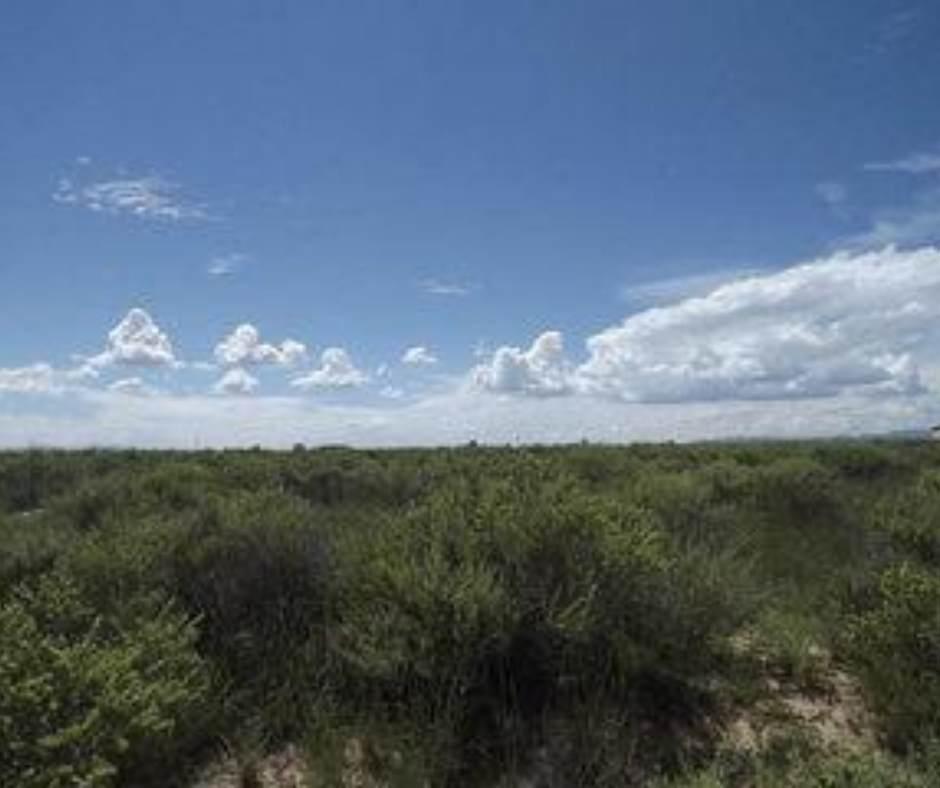 0 Salt Mission Trail - Photo 1