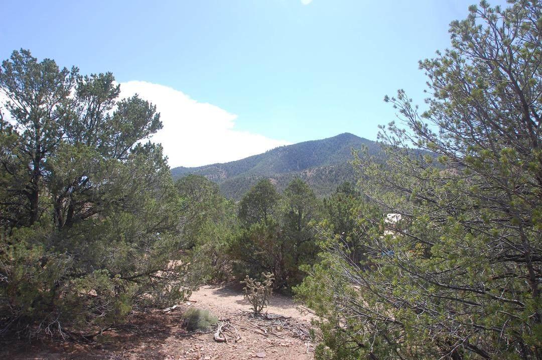 """1661 Cerro Gordo """"A"""" - Photo 1"""