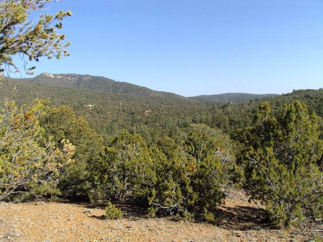 65 Hidden Valley Rd, Tract 4, Santa Fe, NM 87505 (MLS #202004326) :: Berkshire Hathaway HomeServices Santa Fe Real Estate