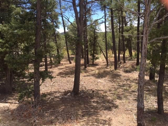 6 Red Tail Ridge, Pecos, NM 87552 (MLS #202004927) :: Neil Lyon Group | Sotheby's International Realty