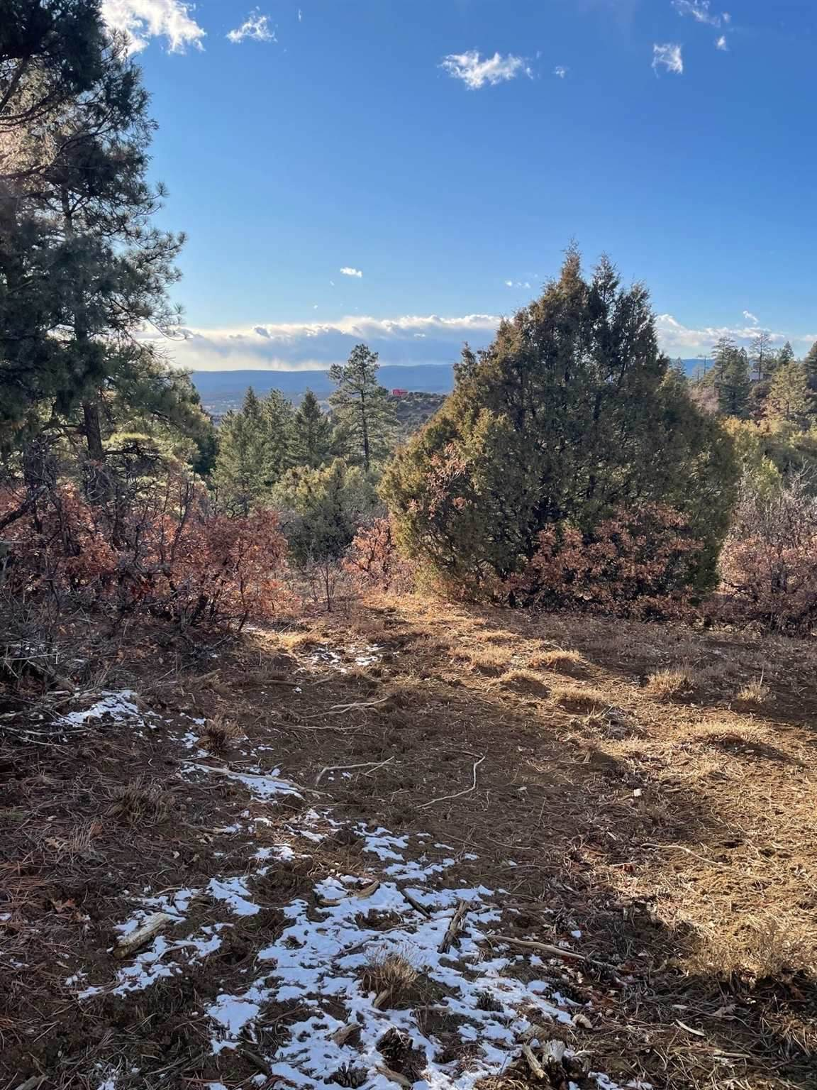 Tract 68 Private Rd 1781 - Photo 1