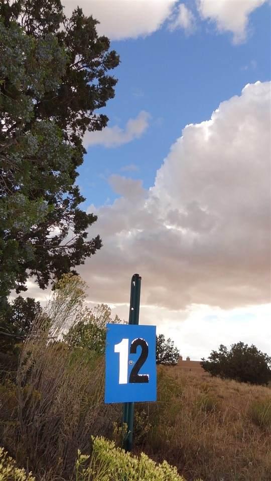 6 Los Suenos Court Lot #12, Santa Fe, NM 87506 (MLS #202100080) :: Neil Lyon Group | Sotheby's International Realty