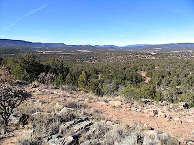 19,21,&25 Rocky Bluffs, Ribera, NM 87538 (MLS #202100452) :: Berkshire Hathaway HomeServices Santa Fe Real Estate