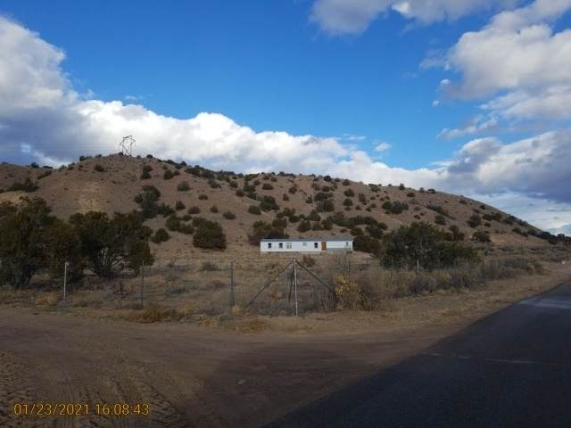 230 County Rd 155, Abiquiu, NM 87510 (MLS #202100460) :: The Very Best of Santa Fe