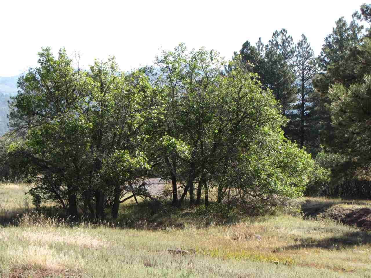 0 Tract 1, Lakes On The Chama - Photo 1