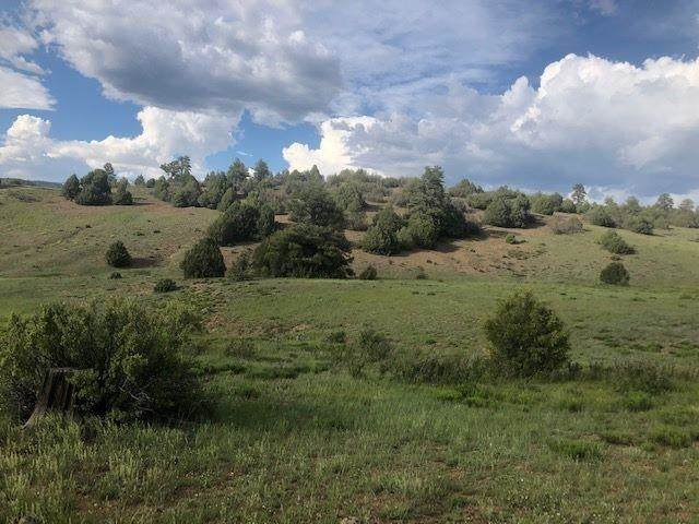 TBD Lot 18 Block 6, Chama, NM 87520 (MLS #202102482) :: Summit Group Real Estate Professionals
