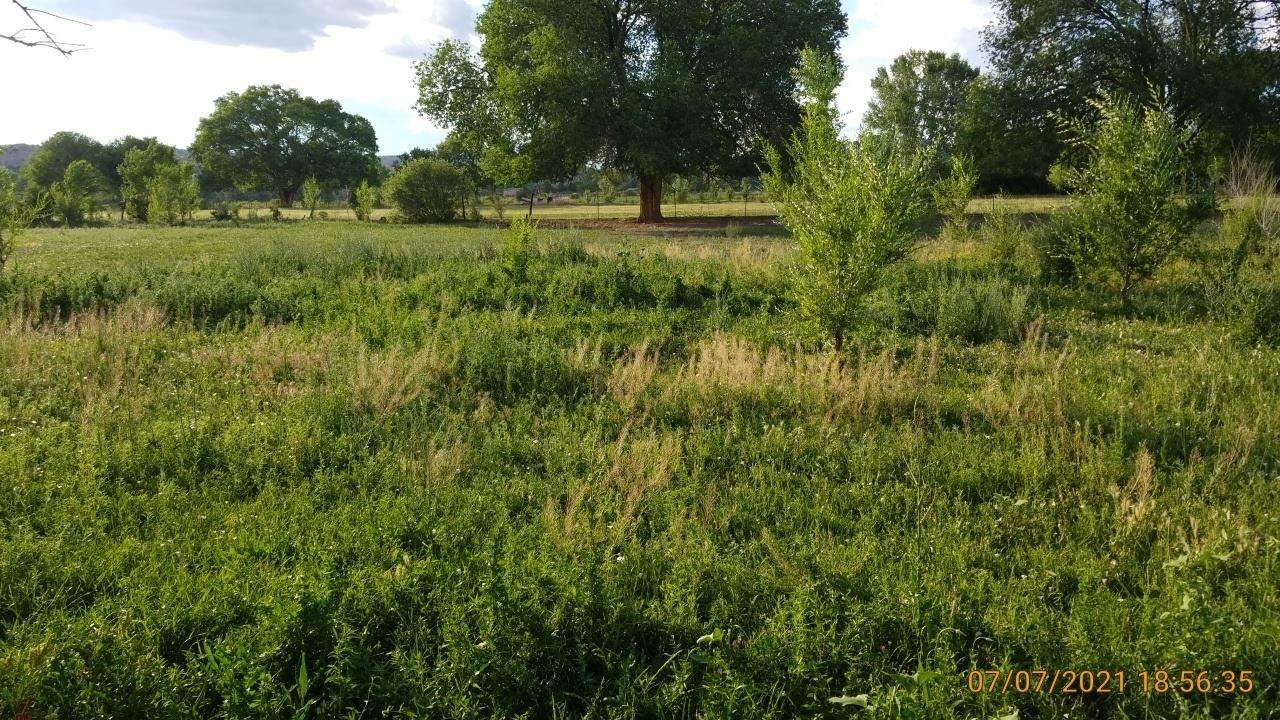 TBD Off Highway 285 - Photo 1