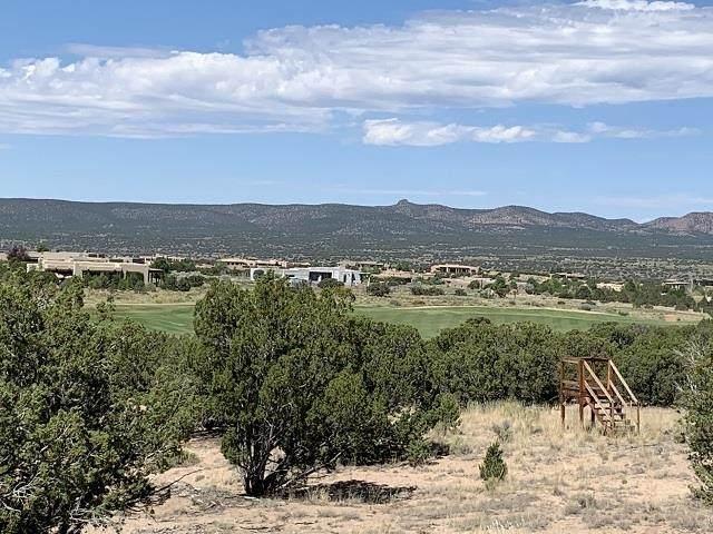 3 Via Palomita (Black Mesa, Lot 7), Santa Fe, NM 87506 (MLS #202104447) :: Neil Lyon Group | Sotheby's International Realty