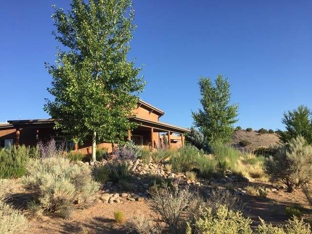 29 La Cienega, Abiquiu, NM 87510 (MLS #202104495) :: The Very Best of Santa Fe