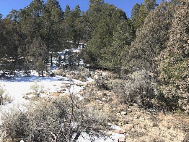 Nm State Rd 115, Canjilon, NM 87518 (MLS #202104553) :: The Very Best of Santa Fe