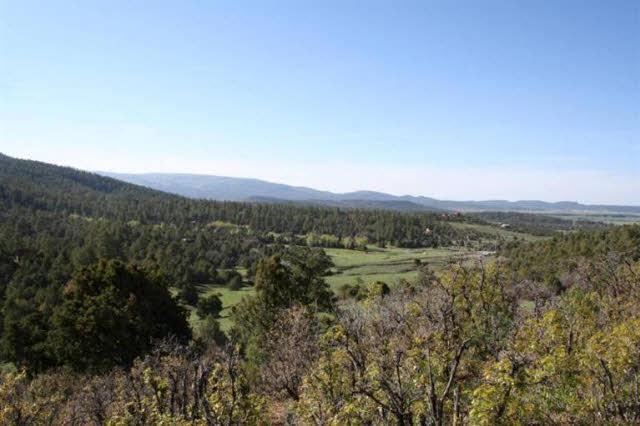 TBD Elk Hill Road, Ponderosa - Photo 1