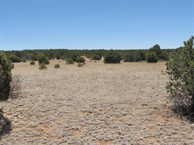200 Apache Mesa - Photo 1
