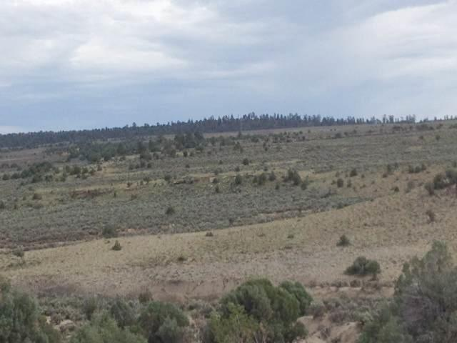 Unit 6, Lot 122, Ranchos Del Vado, Tierra Amarilla, NM 87575 (MLS #201703251) :: The Desmond Group