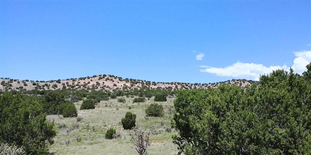 93 Cerro Alto Road - Photo 1