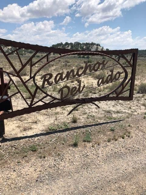 Unit 1 Lot 166 Ranchos Del Vado, Tierra Amarilla, NM 87575 (MLS #201704868) :: The Very Best of Santa Fe