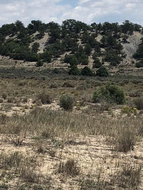 Unit 1, Lot 168, Ranchos Del Vado Sd, Tierra Amarilla, NM 87575 (MLS #201704869) :: The Very Best of Santa Fe