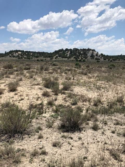 Unit 1, Tract 166 And 168, Ranchos Del Vado S/D, Tierra Amarilla, NM 87575 (MLS #201704871) :: The Very Best of Santa Fe