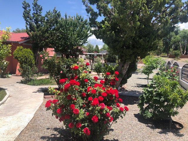 1213 Montana Vista Rd, Espanola, NM 87532 (MLS #201801149) :: The Desmond Group