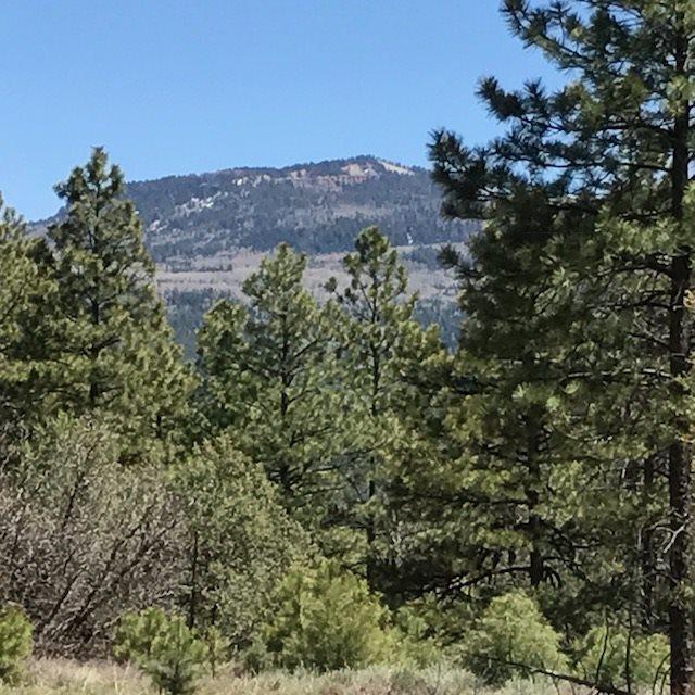 Big Oaks #4 Ticonderoga Sd, Chama, NM 87520 (MLS #201801902) :: The Very Best of Santa Fe