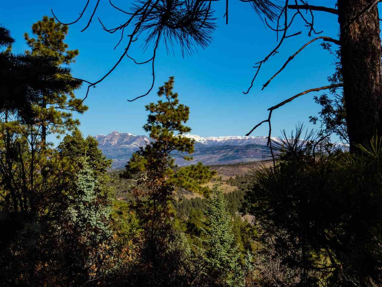 3 Ponderosa Pines, Buckman - Photo 1