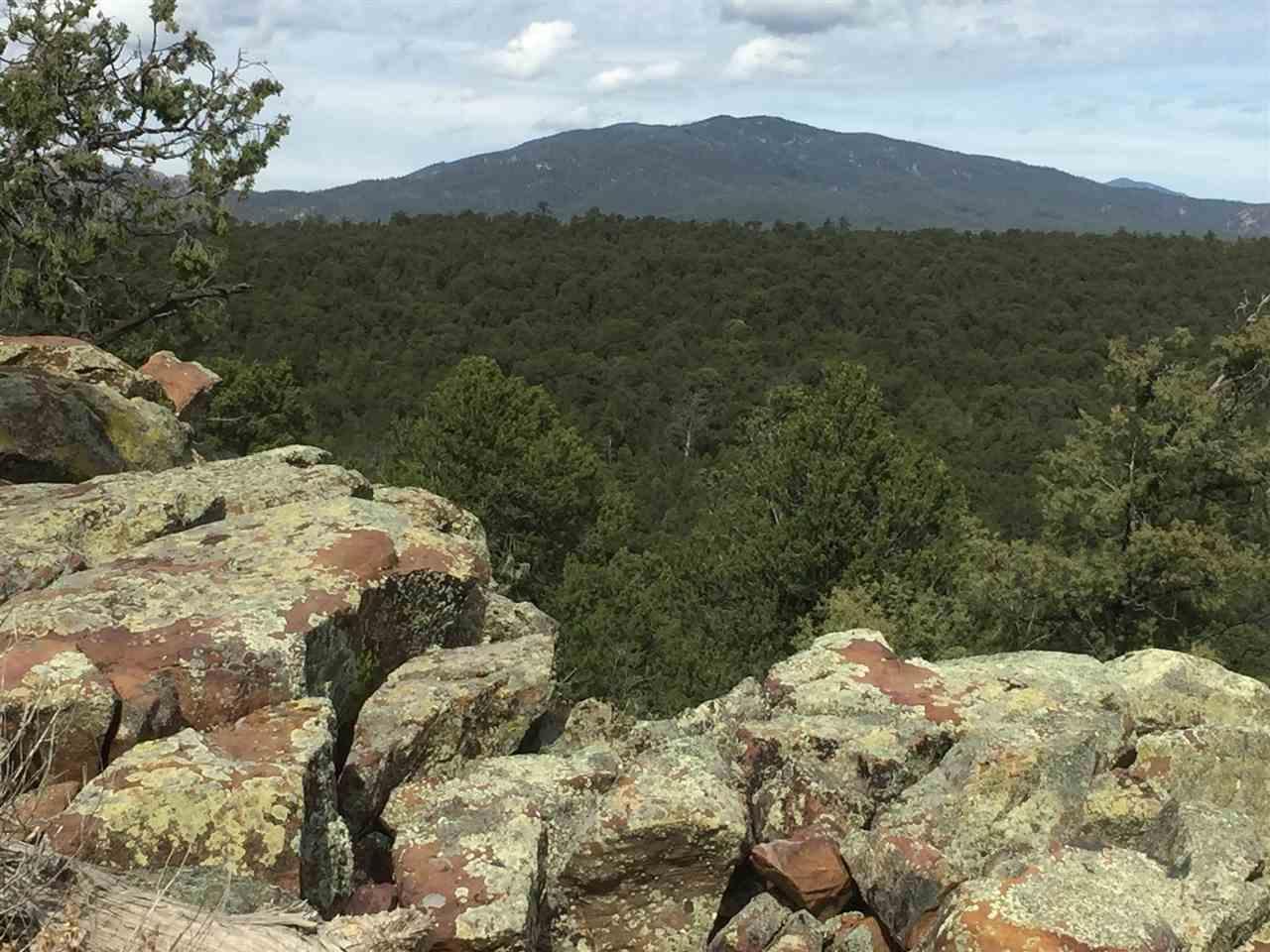 Tract D Soaring Hawk Trail - Photo 1