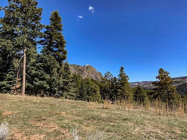 #5 Vista Point, Ticonderoga Ticonderoga Sub, Chama, NM 87520 (MLS #202000311) :: Berkshire Hathaway HomeServices Santa Fe Real Estate