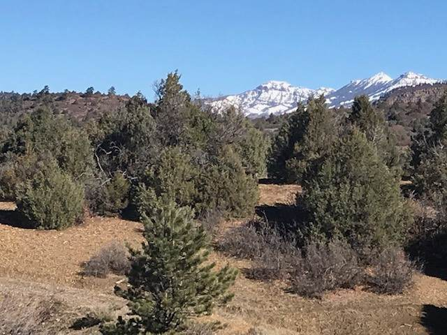 Lot 16, Block 6 Chama West, Chama, NM 87520 (MLS #202004634) :: Summit Group Real Estate Professionals