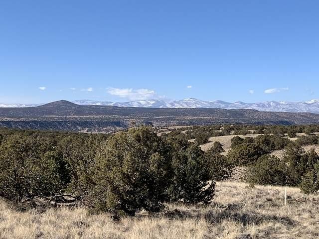4 Camino Rosillo (Lot 92A, Tesoro Enclave), Santa Fe, NM 87506 (MLS #202100205) :: Neil Lyon Group | Sotheby's International Realty