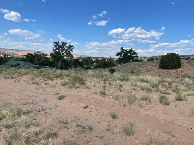 64 Placita Road, Espanola, NM 87532 (MLS #202102870) :: The Very Best of Santa Fe
